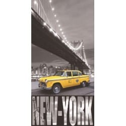 DRAP DE PLAGE NEW YORK PONT DE BROOKLYN